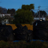 Abandoned bags of contaminated waste