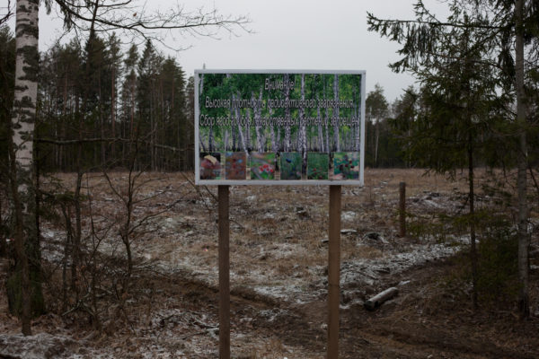 A sign warns about radioactive contamination in a forest near Zlynka (Злынка), Russia. 30 years after the 1986 Chernobyl nuclear disaster the forests in this area continue to be logged – legally and illegally – with the wood presumably used for construction, furniture, and burned for heating, further spreading contamination. Greenpeace/Greg McNevin
