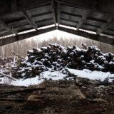 Contaminated timber?