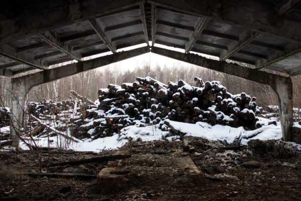 Logs piled up in a contaminated forest near Novozybkov, Russia. 30 years after the 1986 Chernobyl nuclear disaster many forests still contain elevated levels of radioactivity, but they continue to be logged both legally and illegally. Greenpeace/Greg McNevin